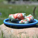 Healthy summer spring roll recipe