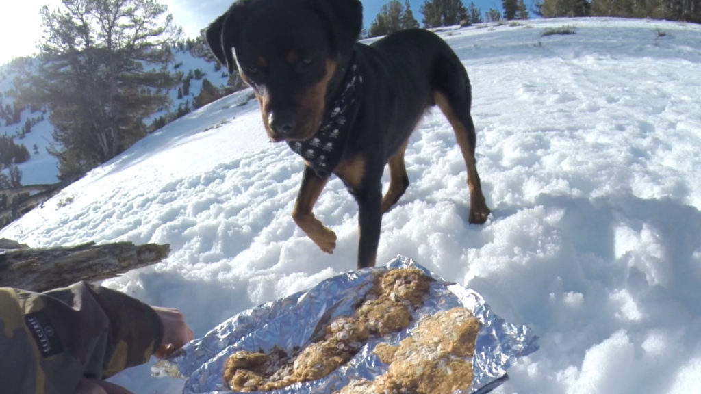 People-friendly dog treats you can make in the backcountry using a snow shovel and aluminum foil.