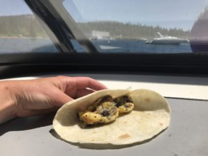 cook a burrito on a boat dash board