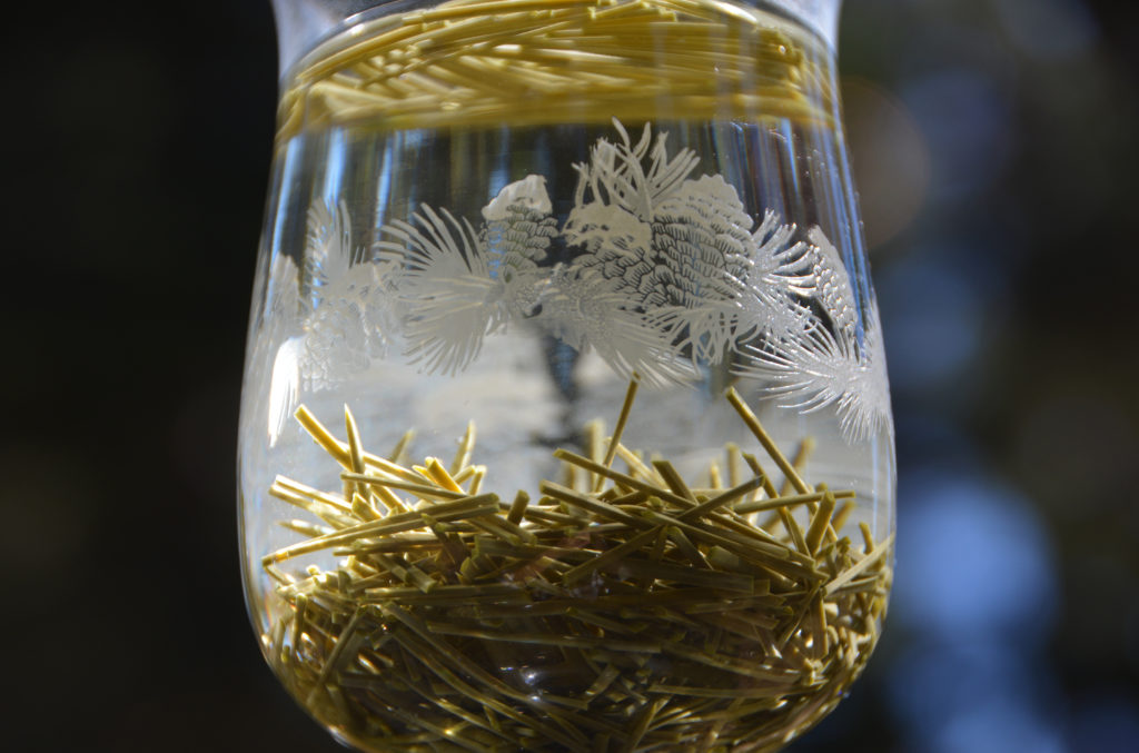 How to make healthy tea with pine needles